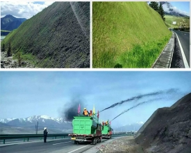 2015年青海祁连-俄堡公路边坡绿化